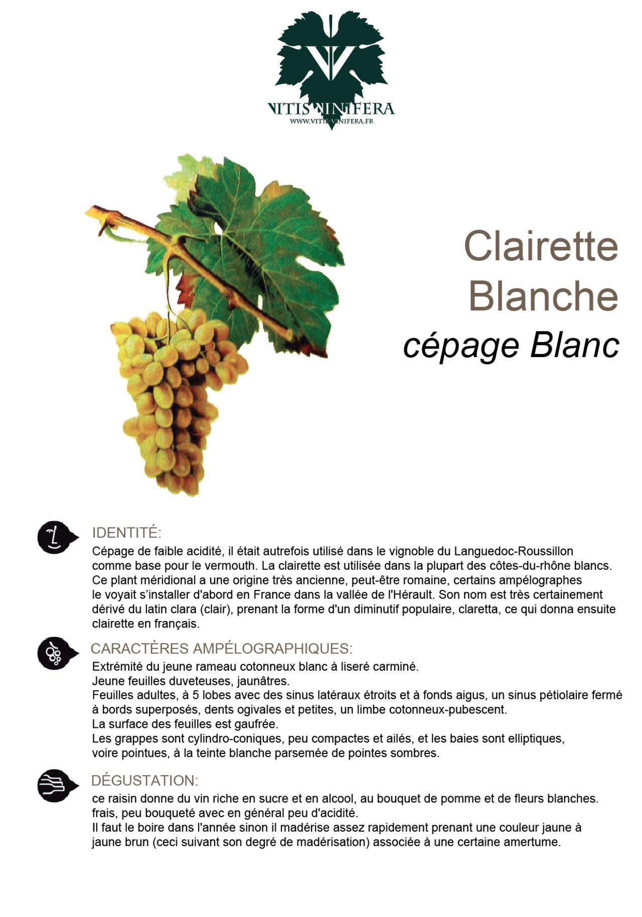 CÉPAGE - CLAIRETTE BLC