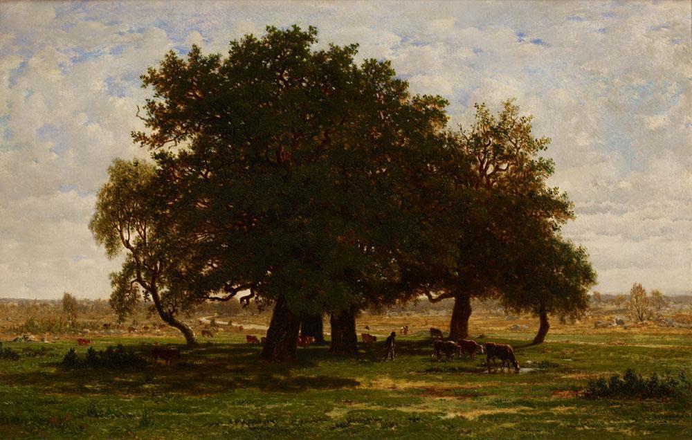L'arbre qui chante