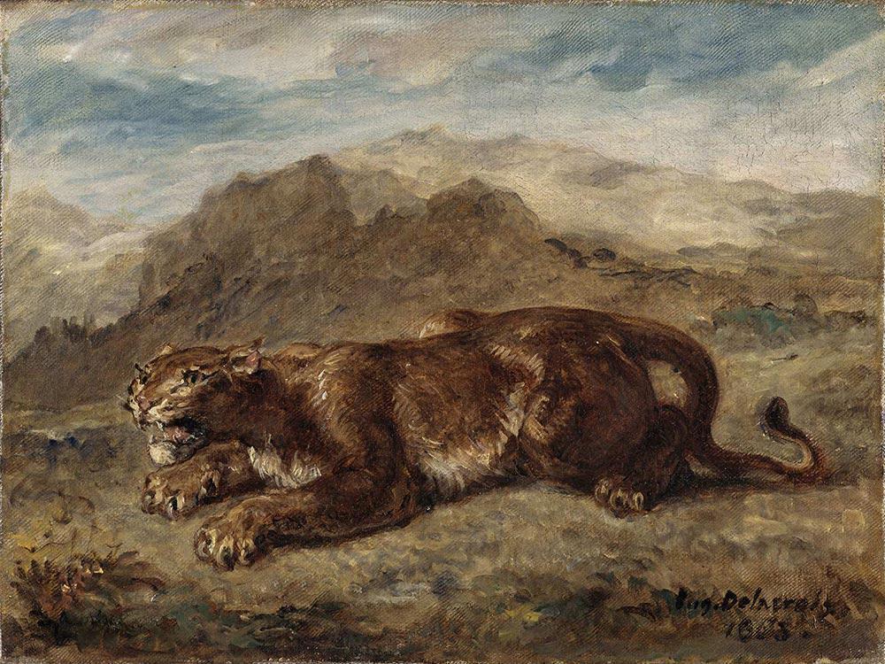 La lionne prête à s'élancer