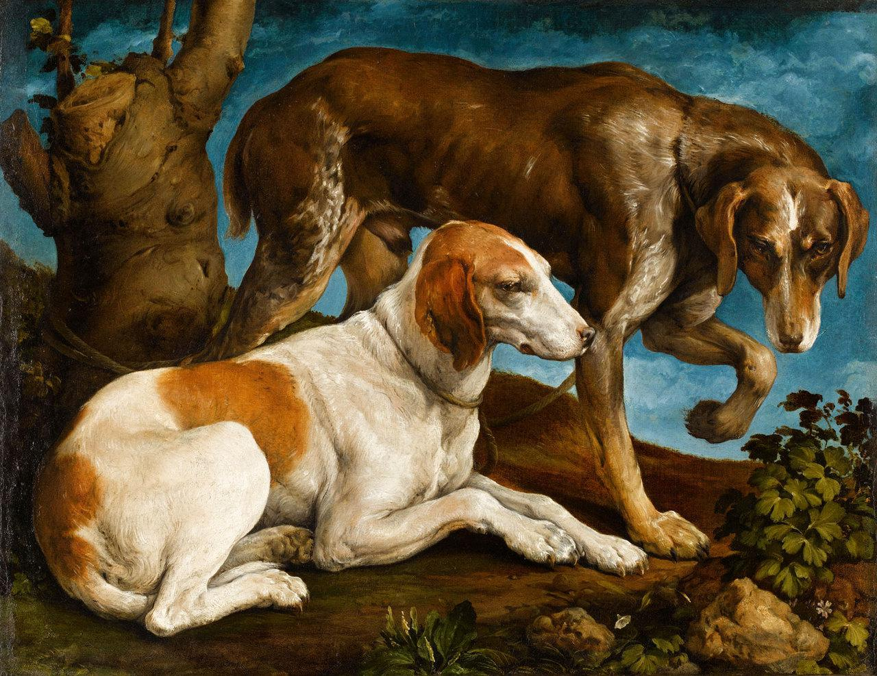Deux chiens de chasse liés à une souche