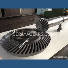 Spiral Bevel Gear for Tire Industry