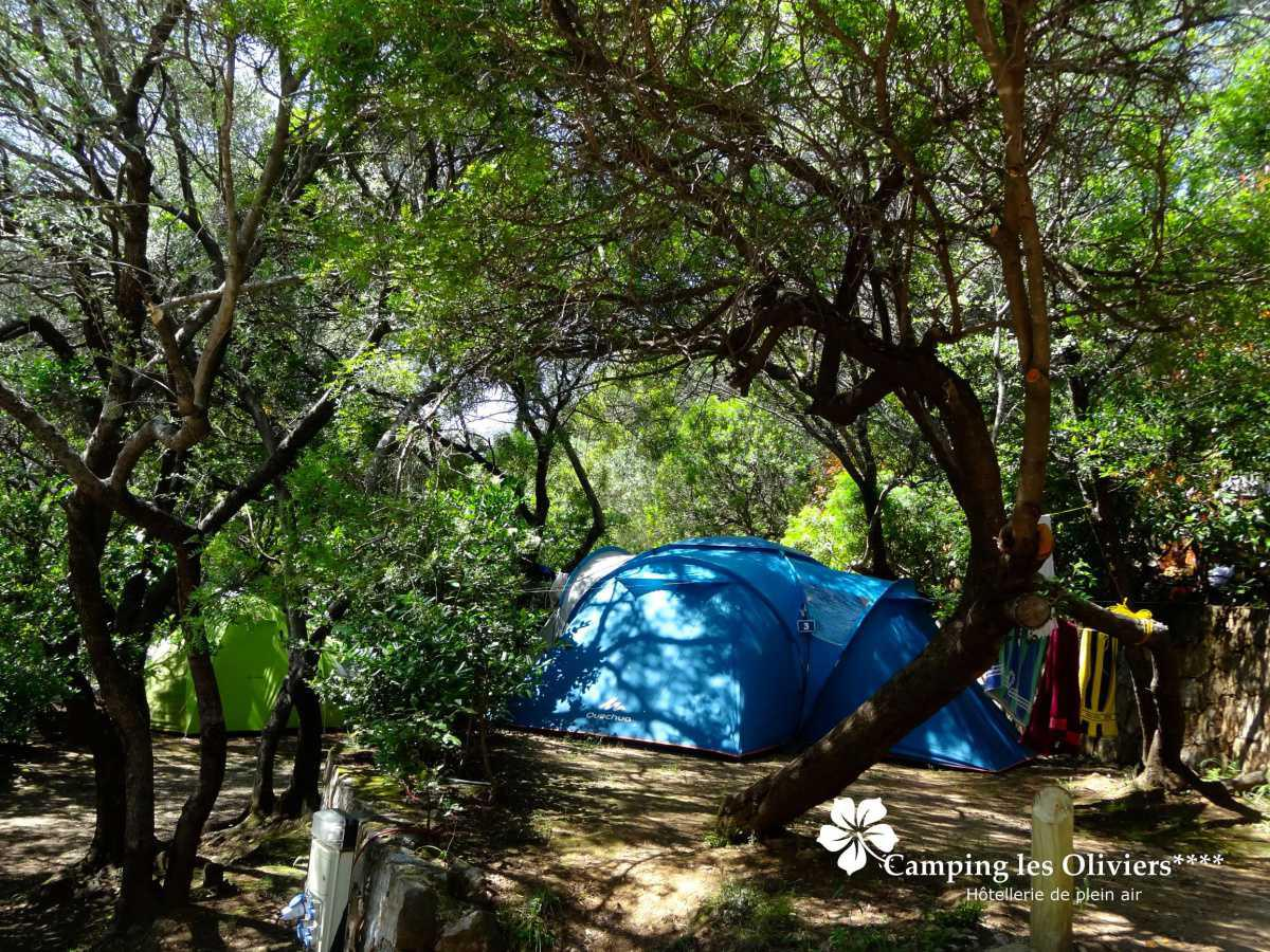 Camping les Oliviers****