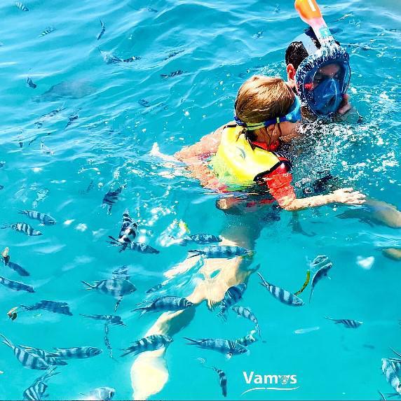 Experience Mombasa Marine Park