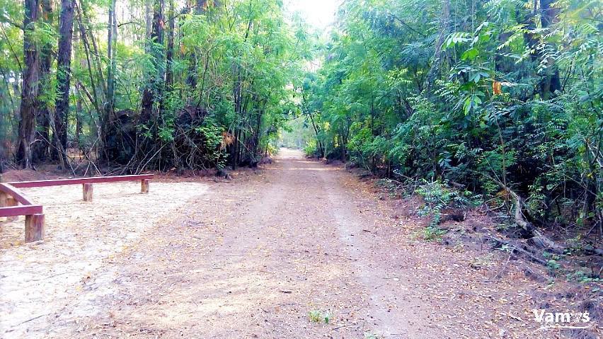 Take a Nature walk at Butterfly Pavilion, Bamburi nature trail