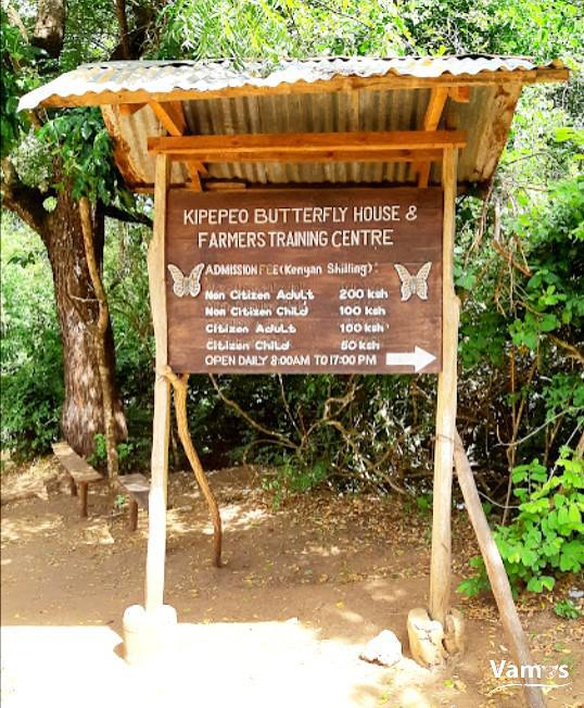Kipepeo Butterfly House