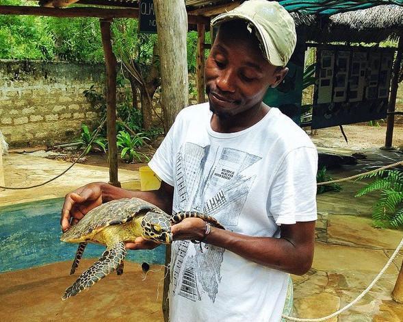 Watamu Turtle Watch