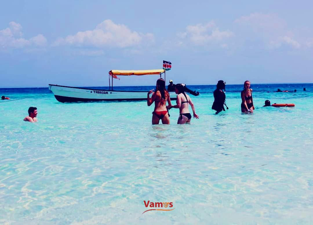 Spot Dolphins in Wasini Island, day trips from 2499 Per person