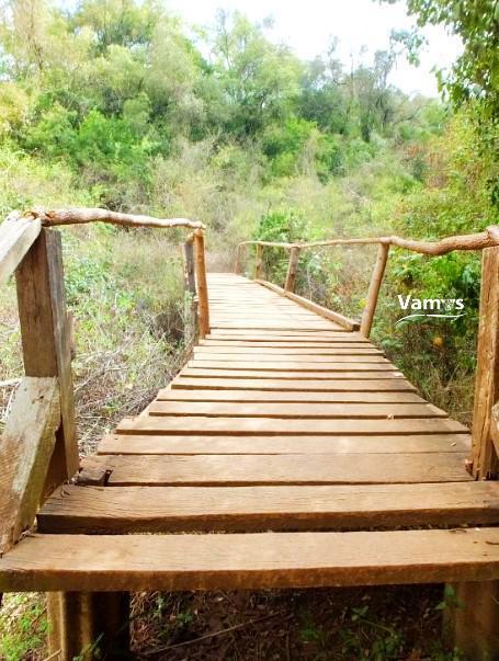 The Oloolua Nature Trail