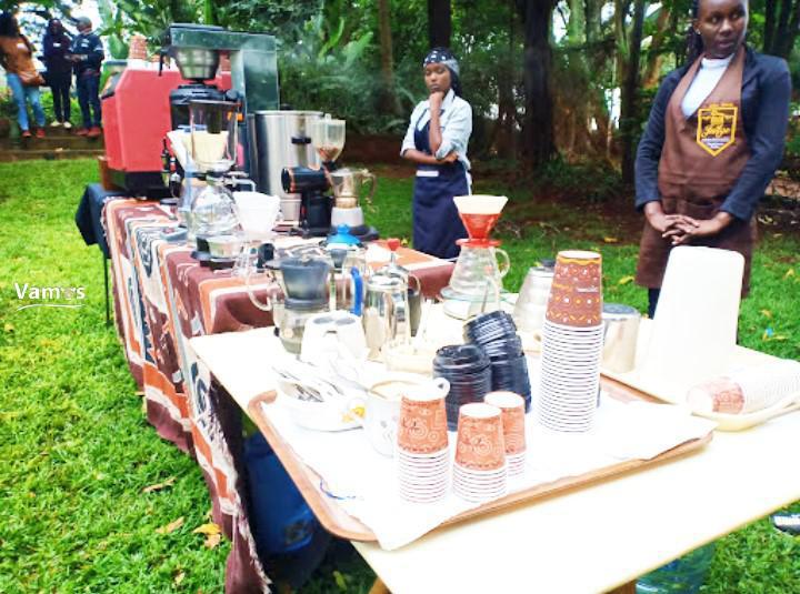 Fairview Coffee Estate