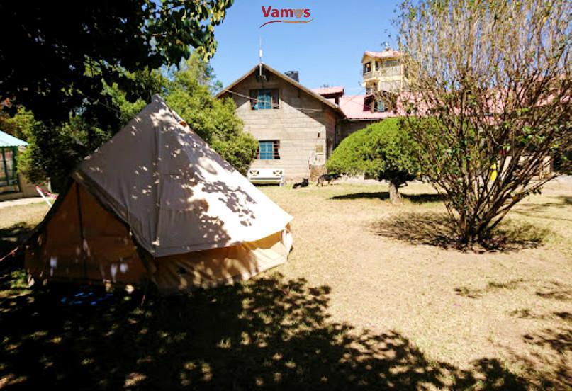 Naivasha Villa & Tree House 1799 OFFER