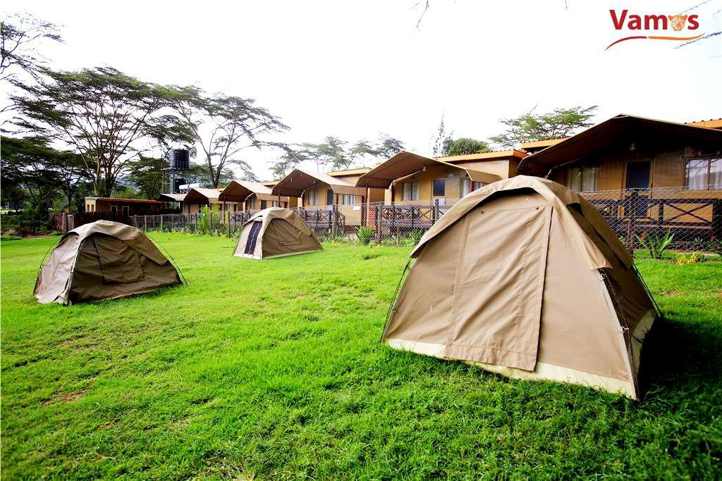 Naivasha Lux Camping from 1599, couples from KES 2999, Camp & swim next to the Lake