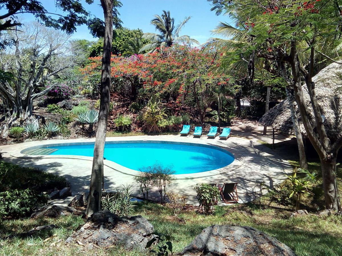 Silver Rock Beach Experience: Stay from 3299 Per person including breakfast!