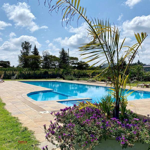 Stay, relax and swim in this 100 Year Old House in Nanyuki from 5299 Per Person!