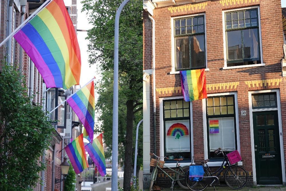 Izan cientos de banderas del orgullo como desafío después de que matones aterroricen al vecindario