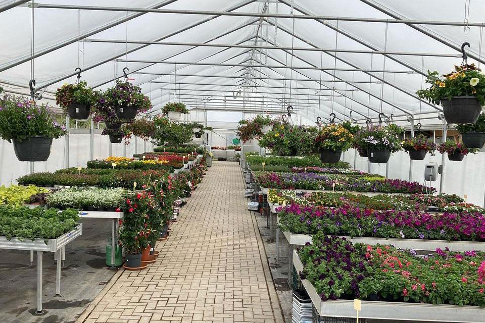 Baumschule und Gartenbau van Pütten