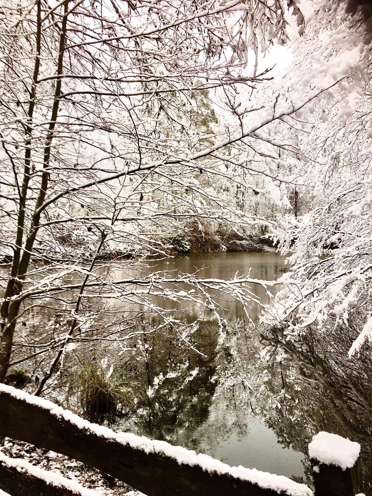 Löschteich im Winter