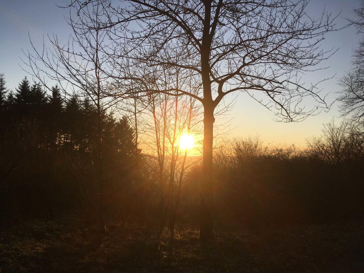 Sonnenuntergang auf der Papenkaule