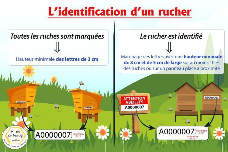 L'identification d'un rucher - Quelles sont les obligations ?