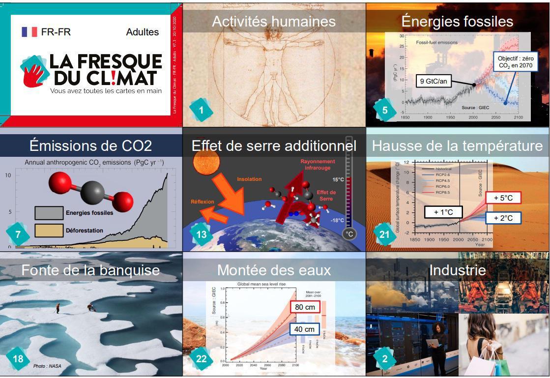 La fresque du climat : un jeu pour entrer ensemble dans la transition écologique !