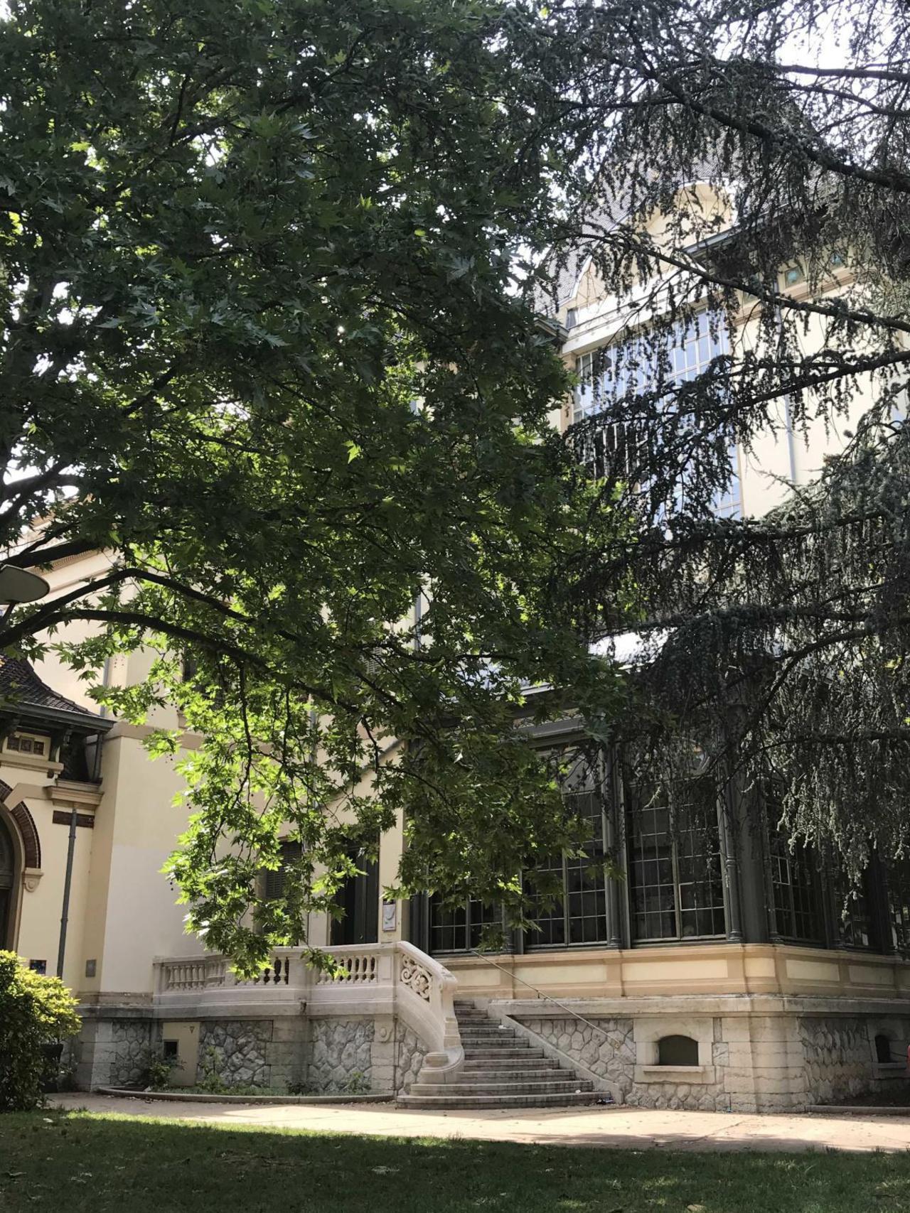 Jardin du Musée Lumière