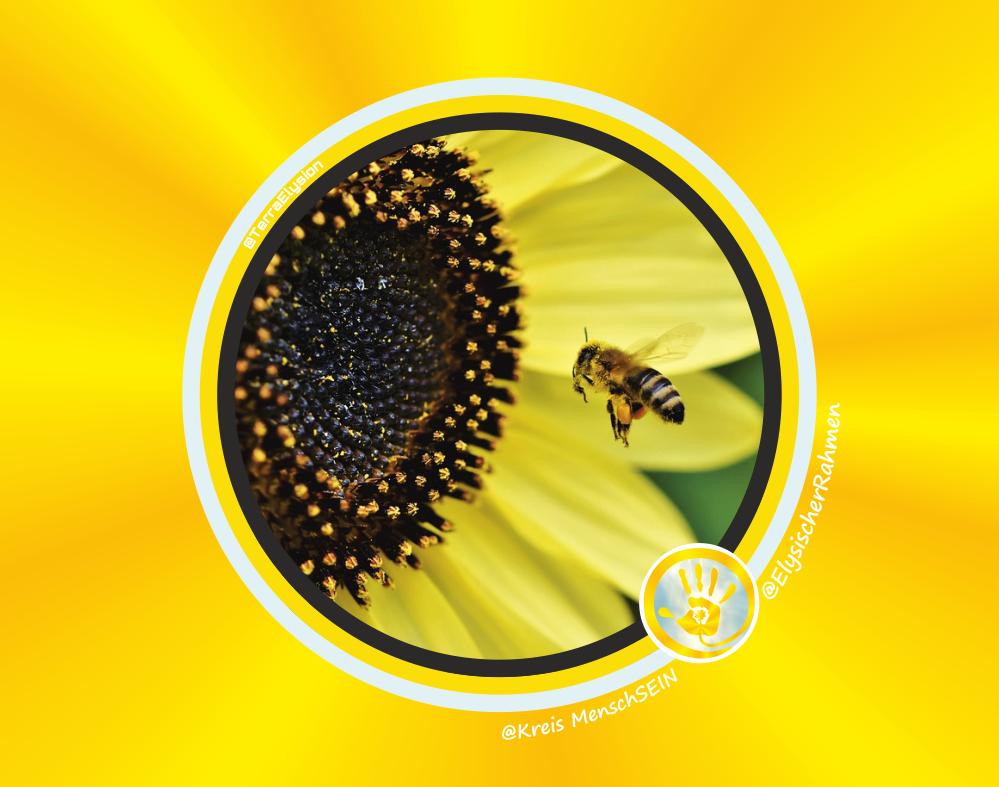 Elysische Rahmen Biene Sonnenblume 1