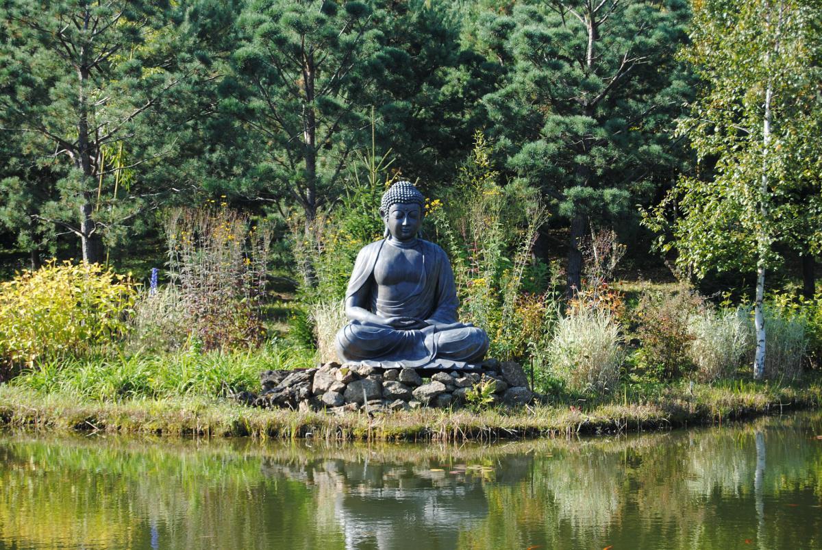 Buddhismus für Anfänger