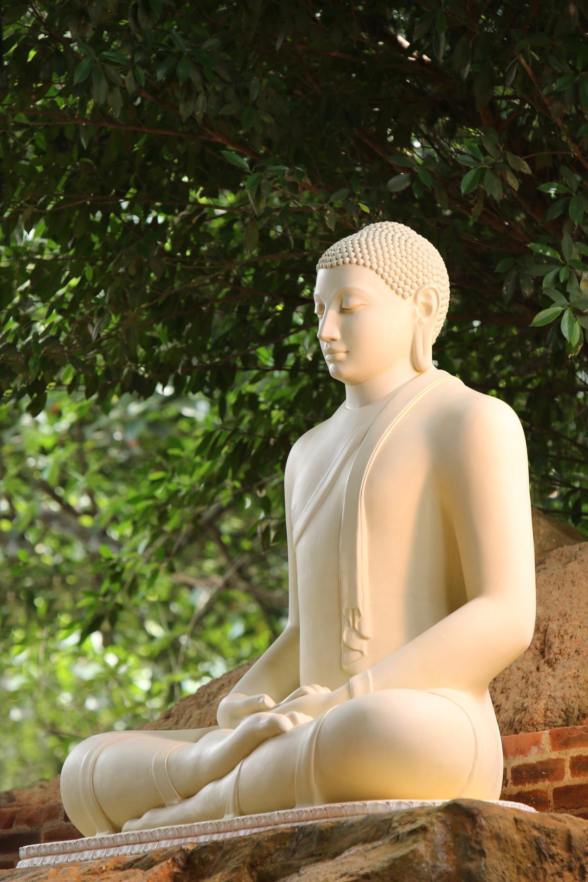 Buddhismus als mächtige Idee
