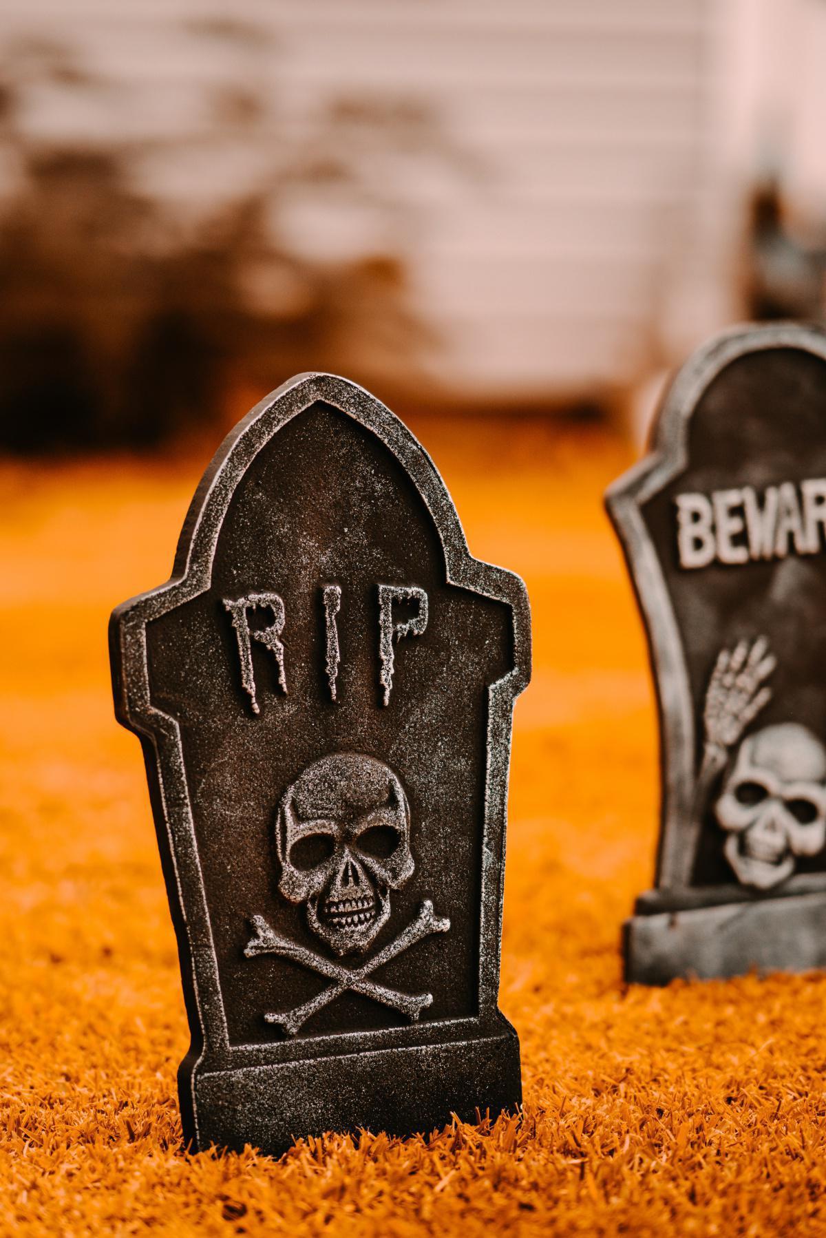 Leben und Sterben im ewigen Kreislauf
