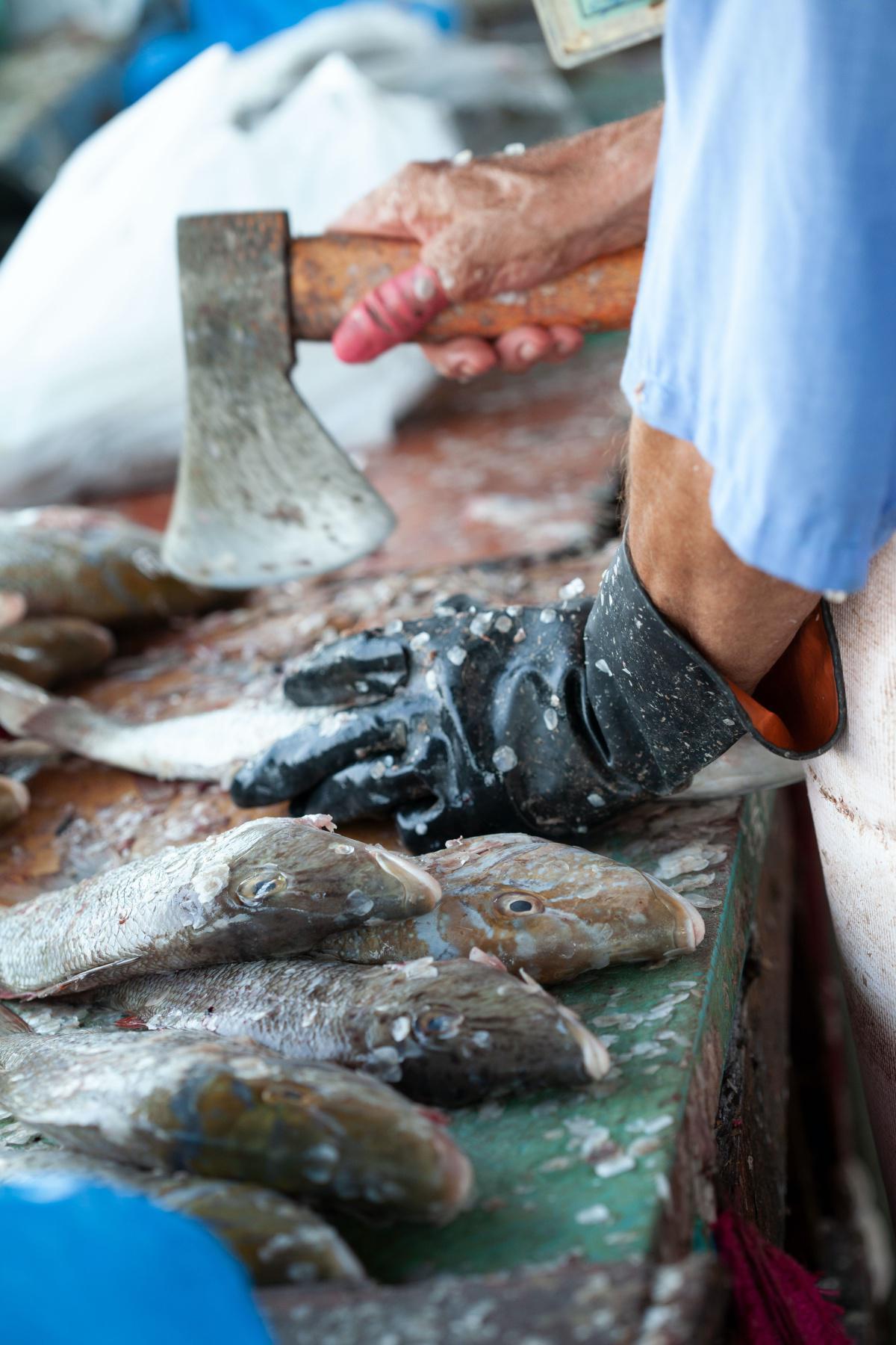 Der Mönch und der Fisch