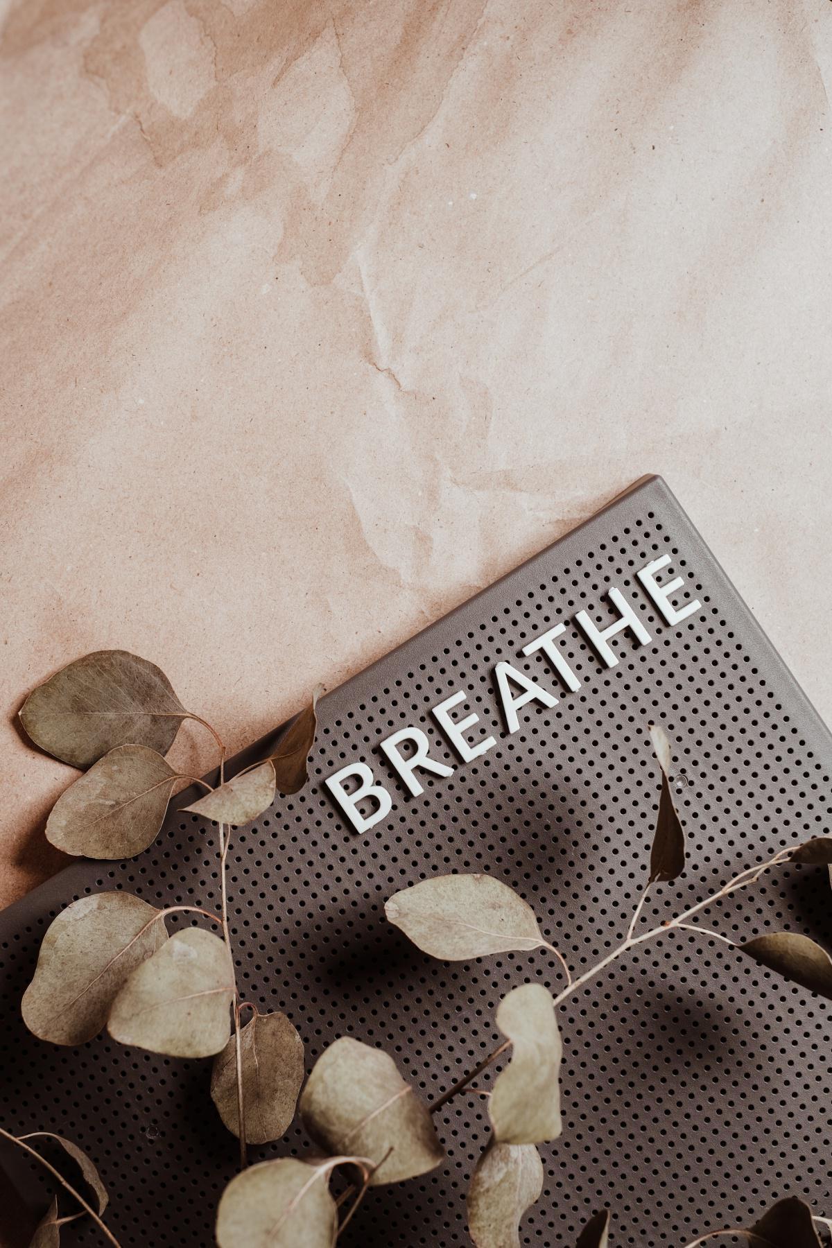 Die Atmung