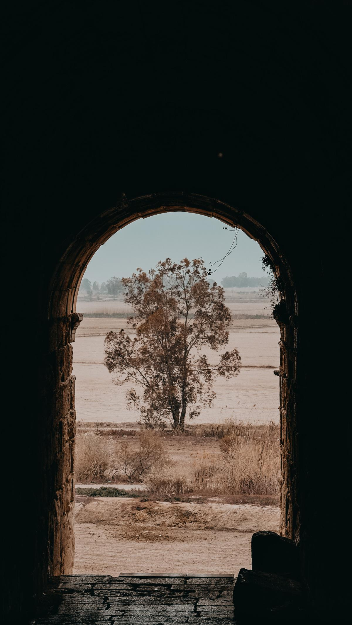 Erleuchtung - Der zentrale Punkt