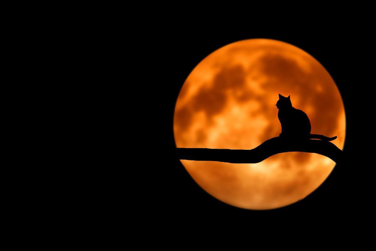 Mittherbstfest (Mondfest)
