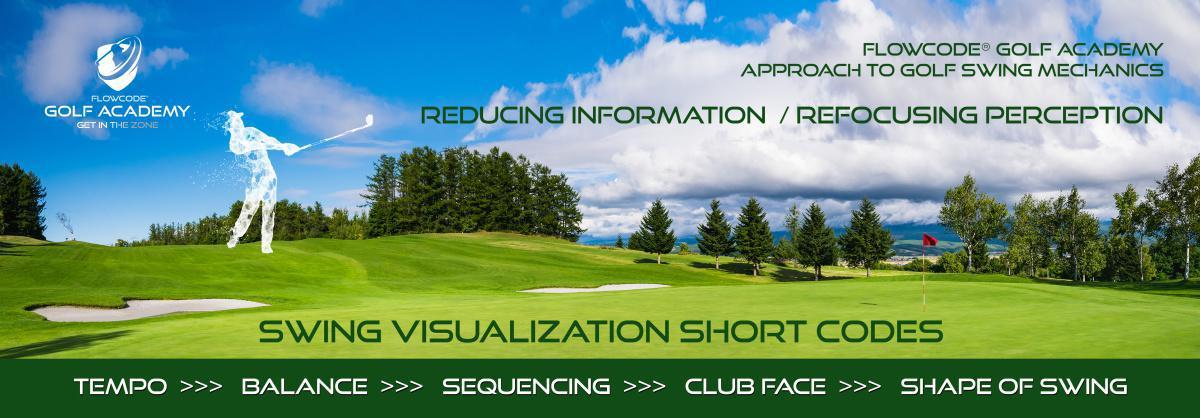 Swing visualization Short codes