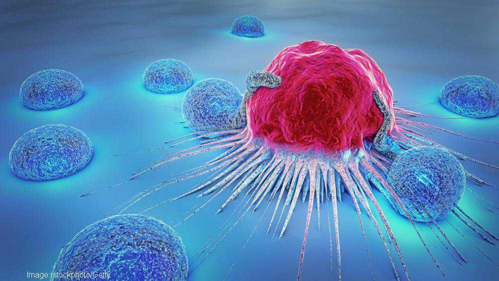 Israeli scientists think they may have stumbled upon massive breakthrough in cancer treatment