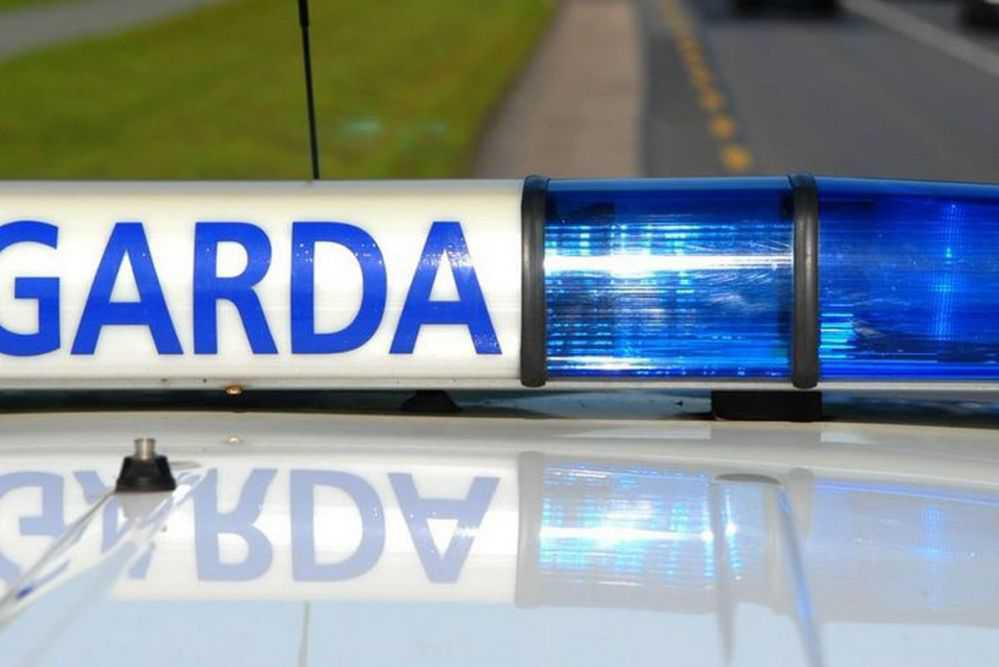Dog shot by garda during house search in Dublin