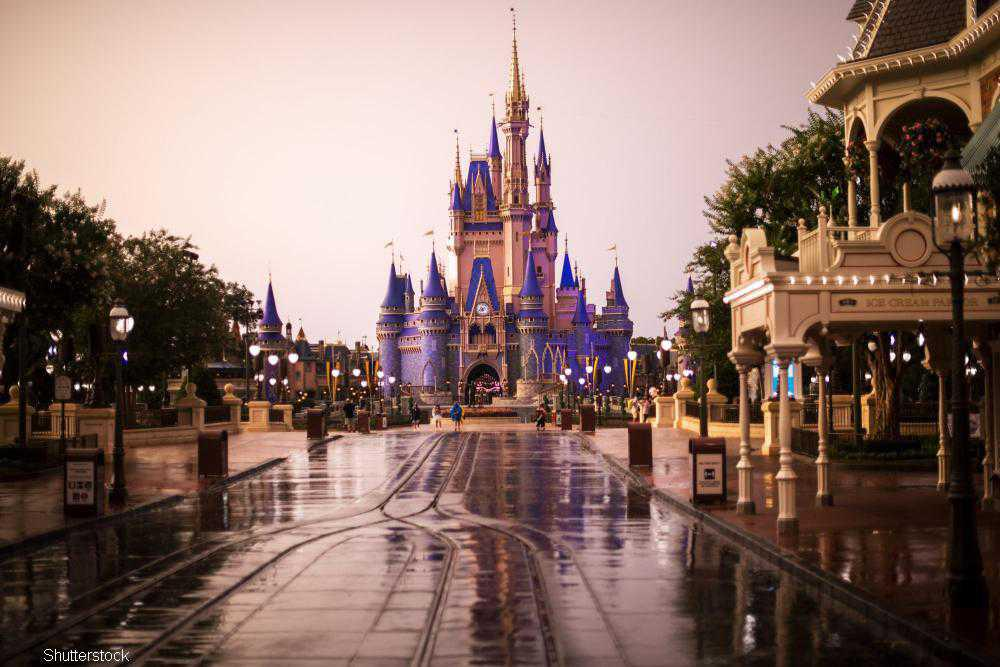 The magic of Disneyworld will come to life with its own cinematic universe on Disney+