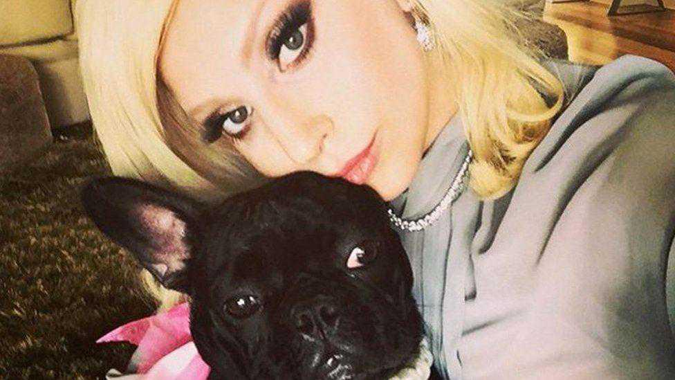 Lady Gaga's dogwalker speaks for first time since dognapping incident