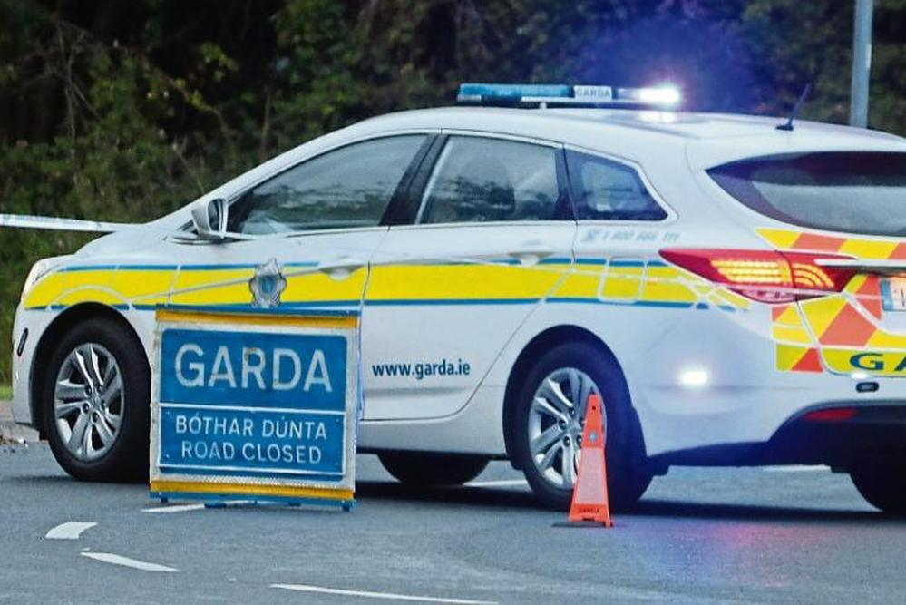 Seven people including two children in serious road crash in Co Louth
