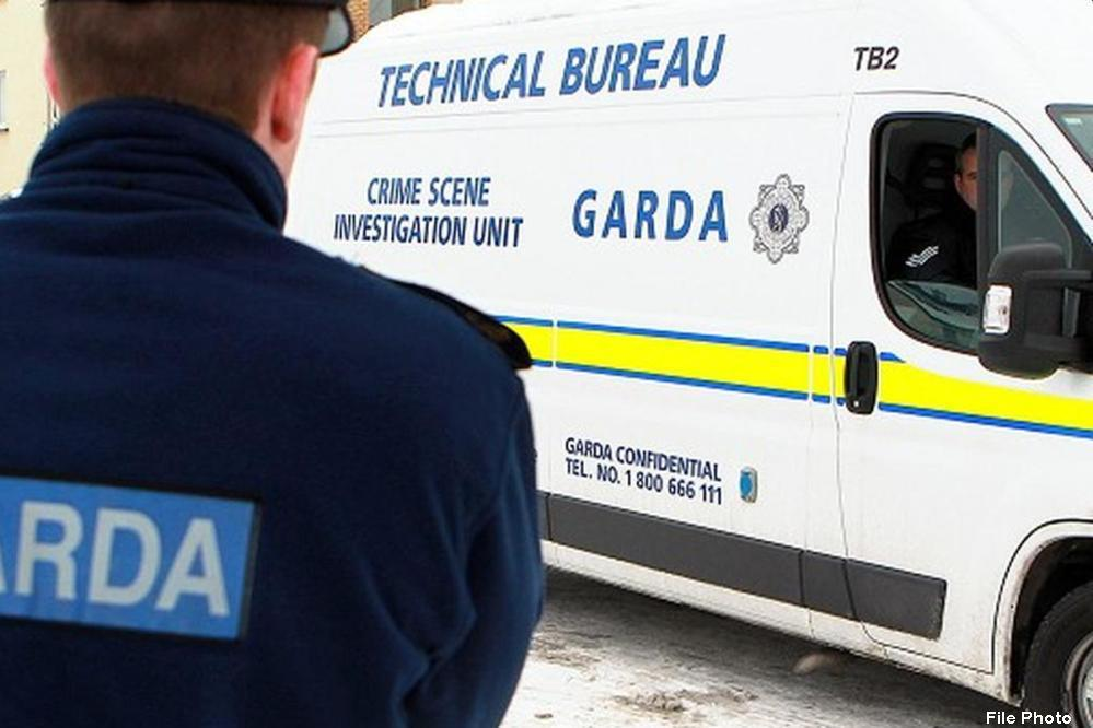 Gardaí seek two men following aggravated burglary near Mullingar