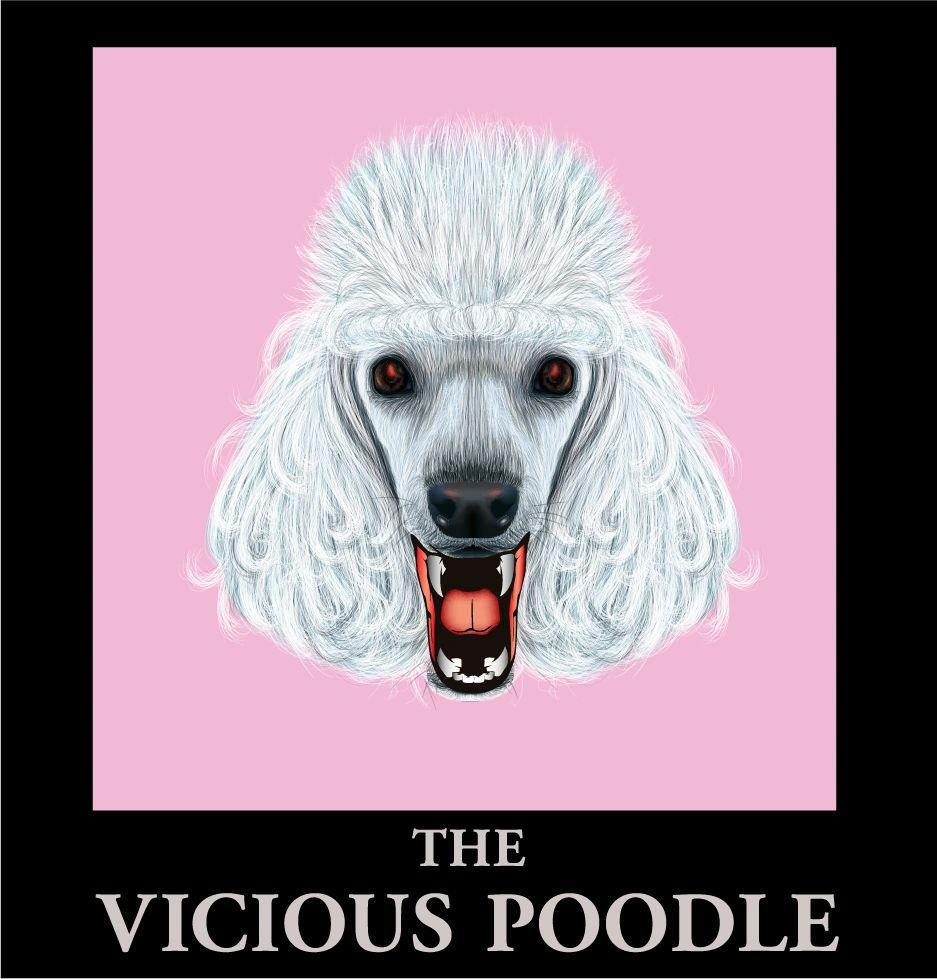 Vicious Poodle Homecoming
