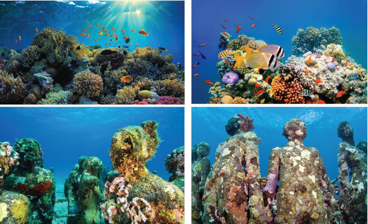 The Reefline in Miami Beach kommt demnächst