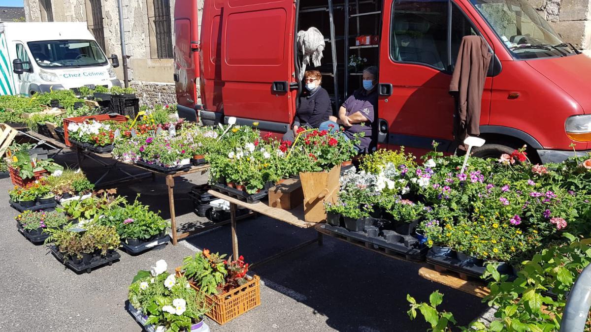 Vendeuse de fleurs de saisons et plants pour potager (Mme Doucet Véronique)