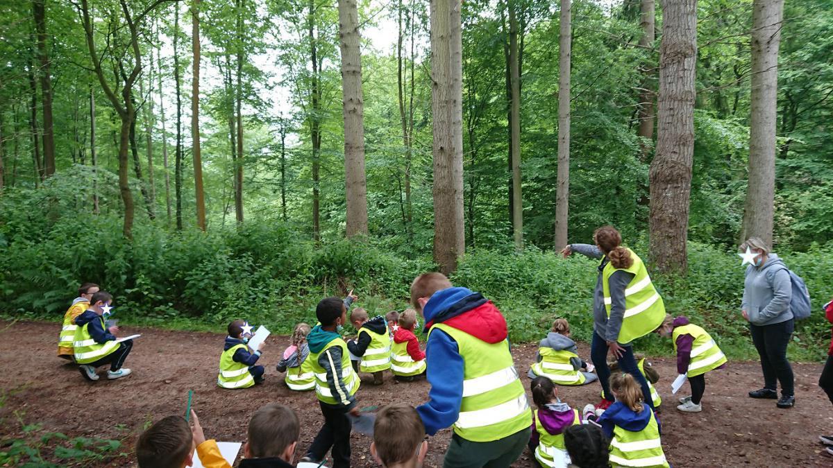 Au programme visite des écuries et randonnée pédestre pour nos Cp et Grande Section!