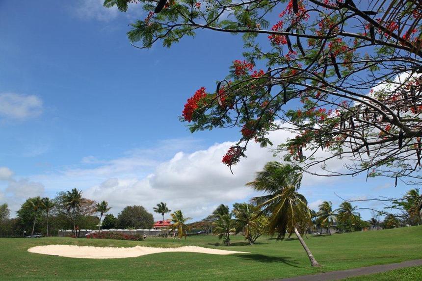 Le Golf de Saint-François Guadeloupe à l'honneur