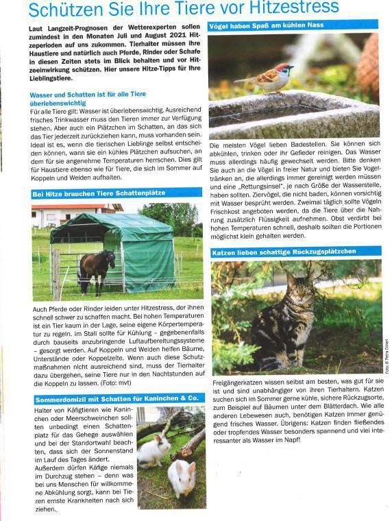Gesundheit für Tiere