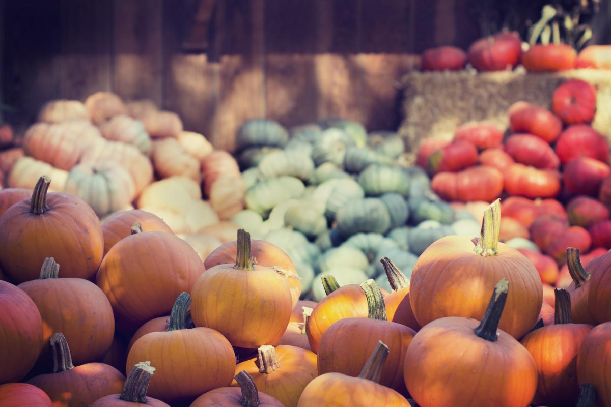 Les légumes de saison au mois de Octobre