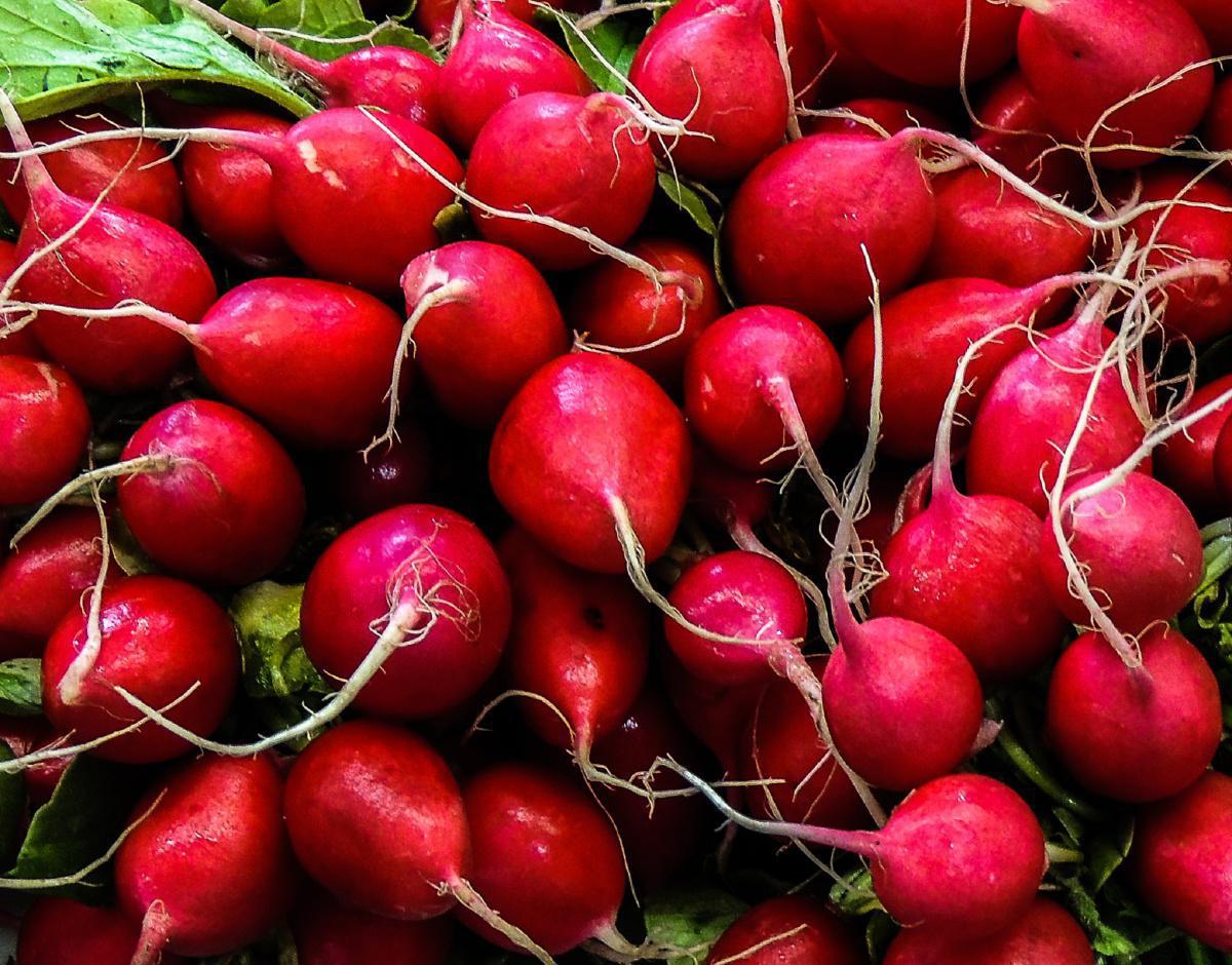 Les légumes de saison au mois d'août