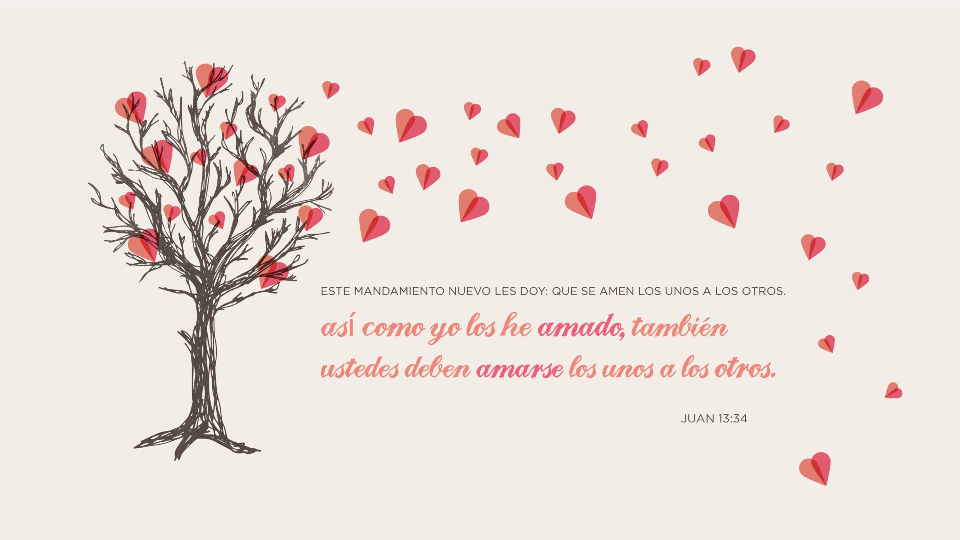 Te regalo Juan 13 34