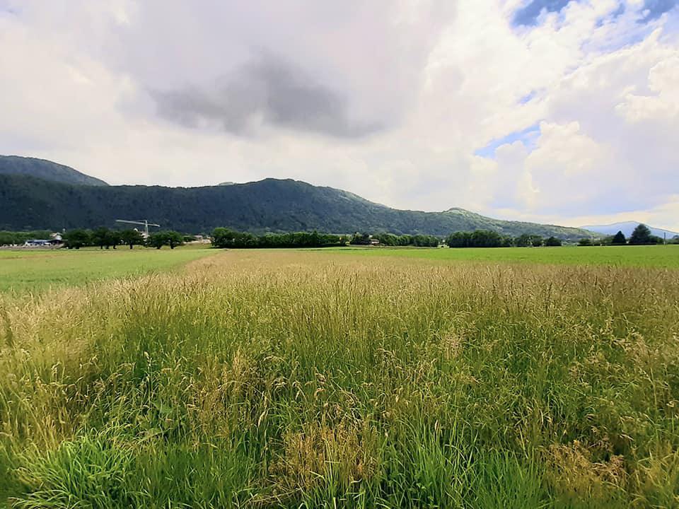 1 canton 12 communes - Orcier