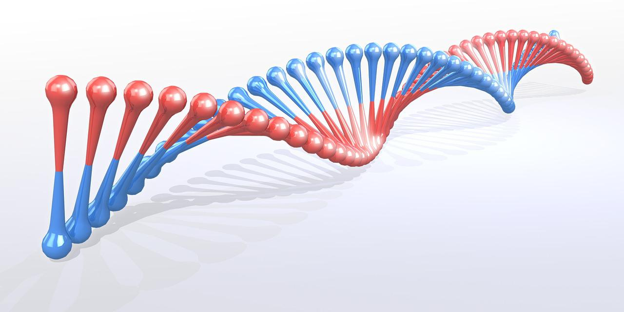 afecta la separación de genes